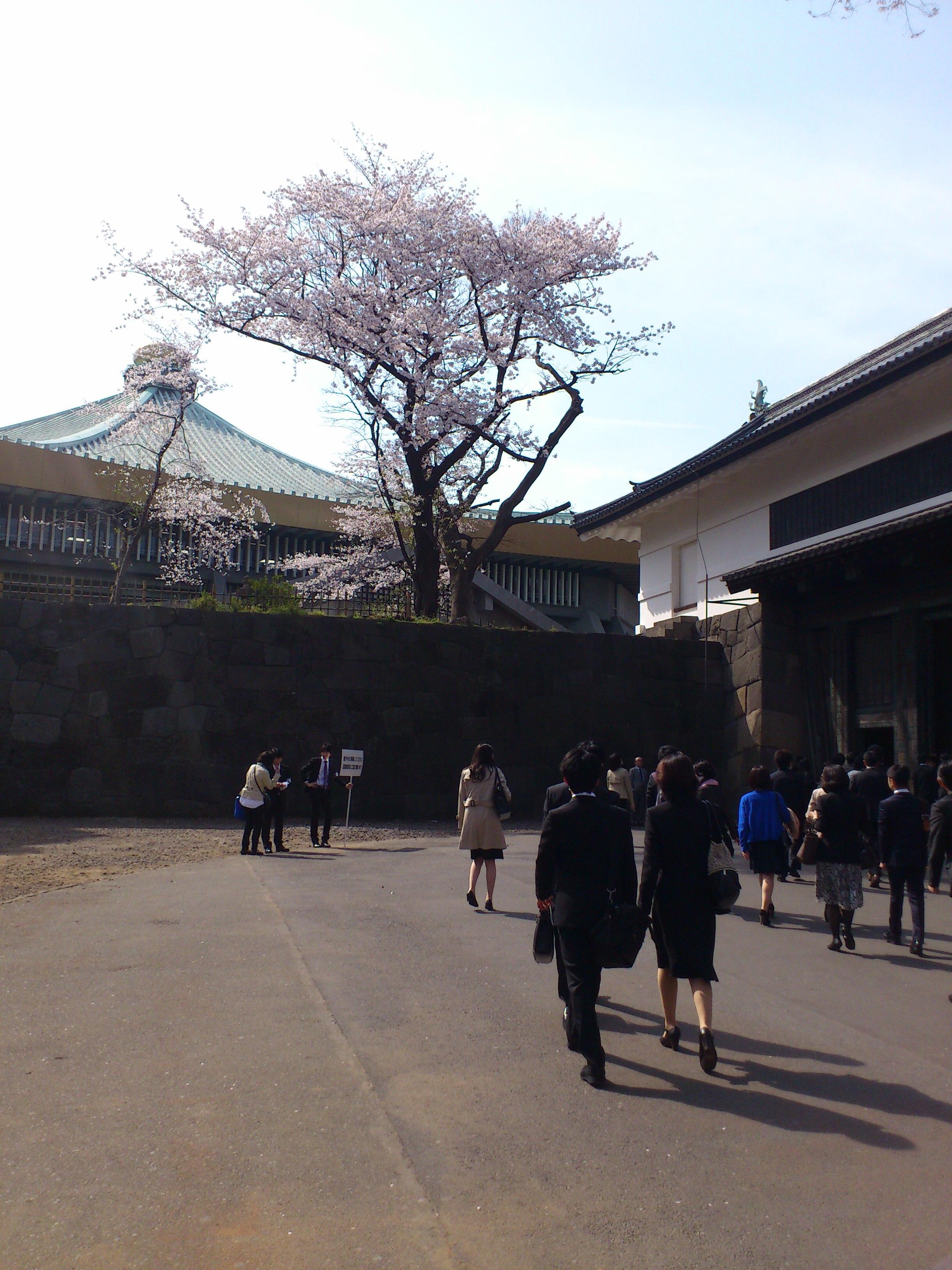 大学 入学 式 東京 電機